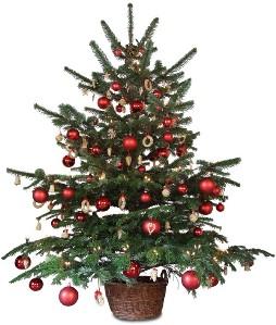Joyeuses fêtes pour le personnel du CPAS d'Arlon …  avec la suppression des congés des réveillons
